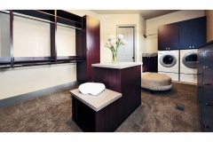 29. IH1 Utility Room